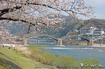 錦帯橋 3.jpg